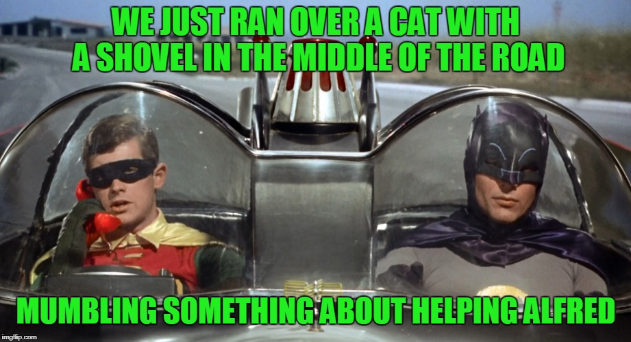WE JUST RAN OVER A CAT WITH A SHOVEL IN THE MIDDLE OF THE ROAD MUMBLING SOMETHING ABOUT HELPING ALFRED | made w/ Imgflip meme maker