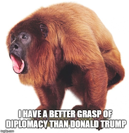 Howler Monkey | I HAVE A BETTER GRASP OF DIPLOMACY THAN DONALD TRUMP | image tagged in howler monkey,donald trump,diplomacy | made w/ Imgflip meme maker