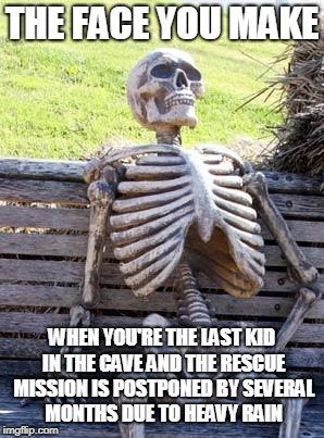 Waiting Skeleton Meme | THE FACE YOU MAKE WHEN YOU'RE THE LAST KID IN THE CAVE AND THE RESCUE MISSION IS POSTPONED BY SEVERAL MONTHS DUE TO HEAVY RAIN | image tagged in memes,waiting skeleton | made w/ Imgflip meme maker