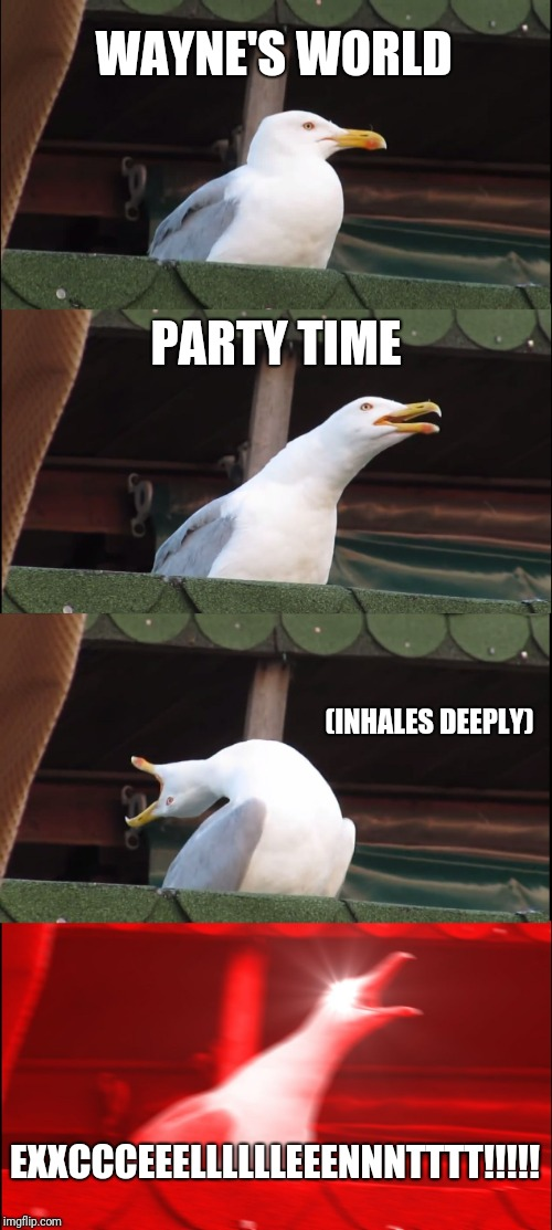 Inhaling Seagull Meme | WAYNE'S WORLD PARTY TIME (INHALES DEEPLY) EXXCCCEEELLLLLLEEENNNTTTT!!!!! | image tagged in memes,inhaling seagull | made w/ Imgflip meme maker