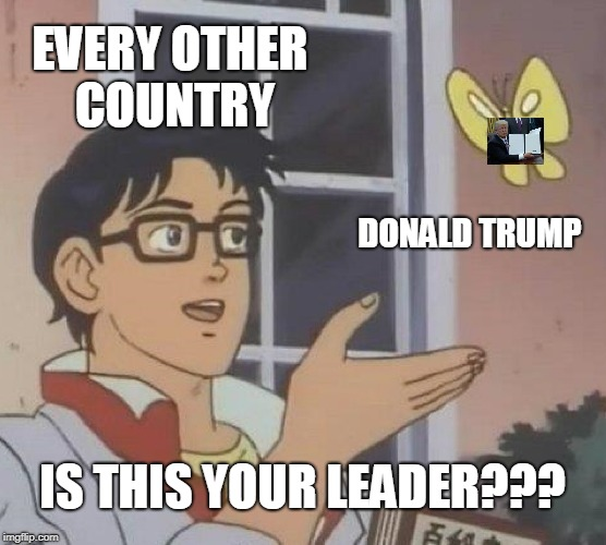 Is This A Pigeon Meme | EVERY OTHER COUNTRY DONALD TRUMP IS THIS YOUR LEADER??? | image tagged in memes,is this a pigeon | made w/ Imgflip meme maker