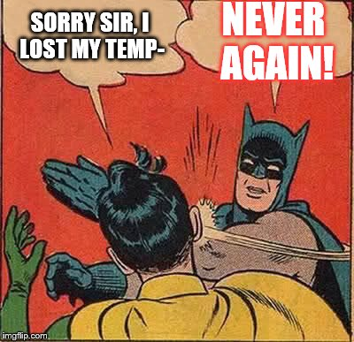 Batman Slapping Robin Meme | SORRY SIR, I LOST MY TEMP- NEVER AGAIN! | image tagged in memes,batman slapping robin | made w/ Imgflip meme maker