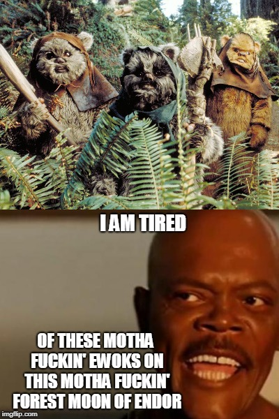 I AM TIRED OF THESE MOTHA F**KIN' EWOKS ON THIS MOTHA F**KIN' FOREST MOON OF ENDOR | made w/ Imgflip meme maker