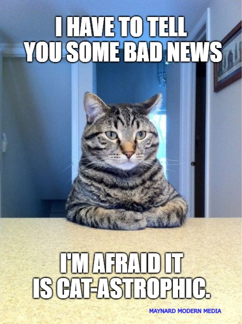This News Could be Cat-astrophic | I HAVE TO TELL YOU SOME BAD NEWS I'M AFRAID IT IS CAT-ASTROPHIC. MAYNARD MODERN MEDIA | image tagged in memes,take a seat cat | made w/ Imgflip meme maker