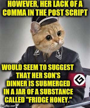 "Grammar Nazi Cat | WOULD SEEM TO SUGGEST THAT HER SON'S DINNER IS SUBMERGED IN A JAR OF A SUBSTANCE CALLED ""FRIDGE HONEY."" HOWEVER, HER LACK OF A COMMA IN THE  