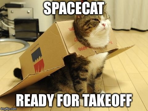 SPACECAT READY FOR TAKEOFF | image tagged in memes,cute,cat | made w/ Imgflip meme maker