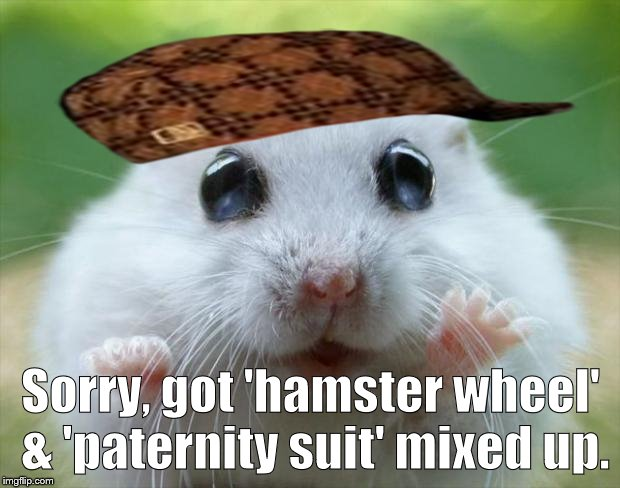 Hamster cute | Sorry, got 'hamster wheel' & 'paternity suit' mixed up. | image tagged in hamster cute,scumbag | made w/ Imgflip meme maker