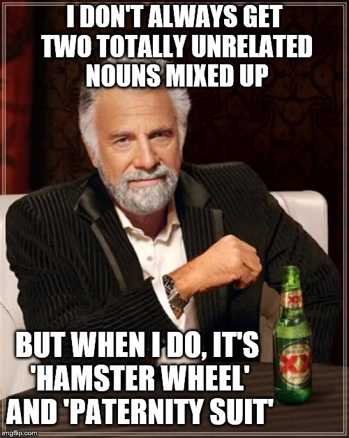 The Most Interesting Man In The World Meme | I DON'T ALWAYS GET TWO TOTALLY UNRELATED NOUNS MIXED UP BUT WHEN I DO, IT'S 'HAMSTER WHEEL' AND 'PATERNITY SUIT' | image tagged in memes,the most interesting man in the world | made w/ Imgflip meme maker