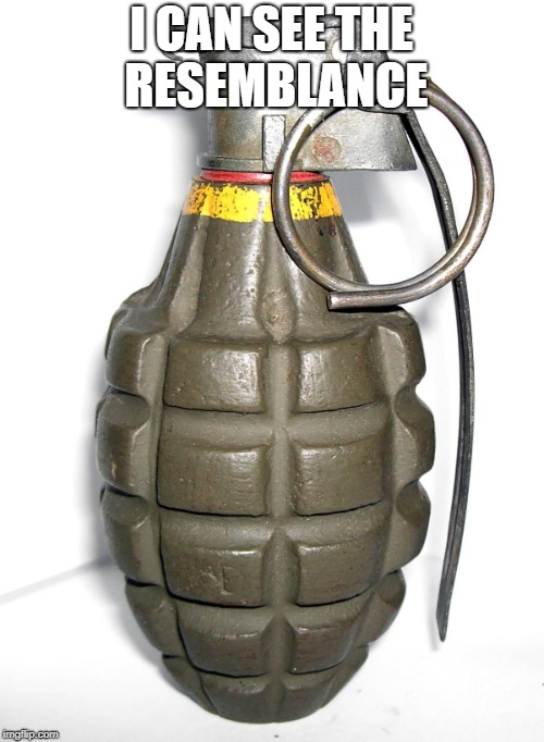 grenade | I CAN SEE THE RESEMBLANCE | image tagged in grenade | made w/ Imgflip meme maker
