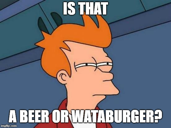 Futurama Fry Meme | IS THAT A BEER OR WATABURGER? | image tagged in memes,futurama fry | made w/ Imgflip meme maker