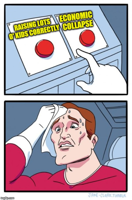 Two Buttons Meme | RAISING LOTS O' KIDS CORRECTLY ECONOMIC COLLAPSE | image tagged in memes,two buttons | made w/ Imgflip meme maker
