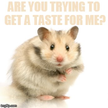 ARE YOU TRYING TO GET A TASTE FOR ME? | made w/ Imgflip meme maker
