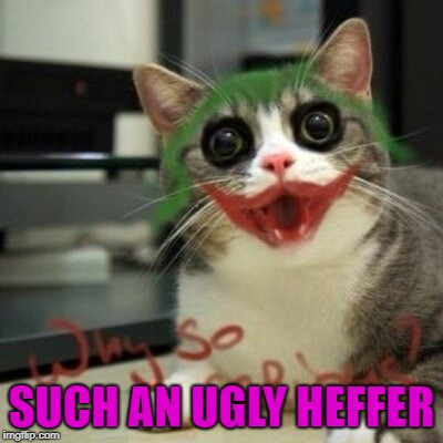 SUCH AN UGLY HEFFER | made w/ Imgflip meme maker