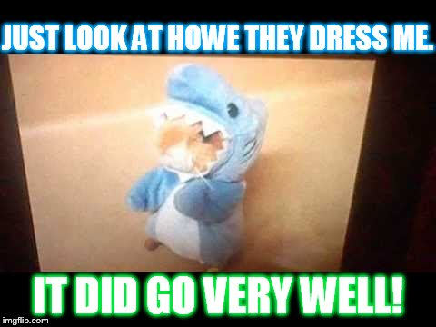 JUST LOOK AT HOWE THEY DRESS ME. IT DID GO VERY WELL! | made w/ Imgflip meme maker