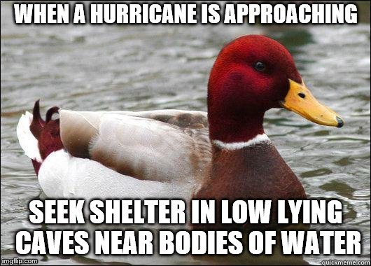 make actual bad advice mallard | WHEN A HURRICANE IS APPROACHING SEEK SHELTER IN LOW LYING CAVES NEAR BODIES OF WATER | image tagged in make actual bad advice mallard | made w/ Imgflip meme maker