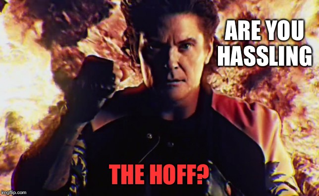 ARE YOU HASSLING THE HOFF? | made w/ Imgflip meme maker