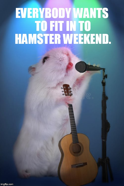 EVERYBODY WANTS TO FIT IN TO HAMSTER WEEKEND. | made w/ Imgflip meme maker