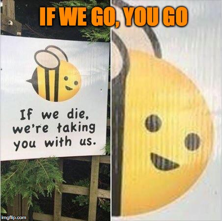 Colony Collapse Disorder | IF WE GO, YOU GO | image tagged in bee warning,environment,bees | made w/ Imgflip meme maker