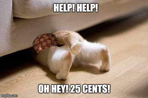 Bonus!! | HELP! HELP! OH HEY! 25 CENTS! | image tagged in funny cat,bonus | made w/ Imgflip meme maker