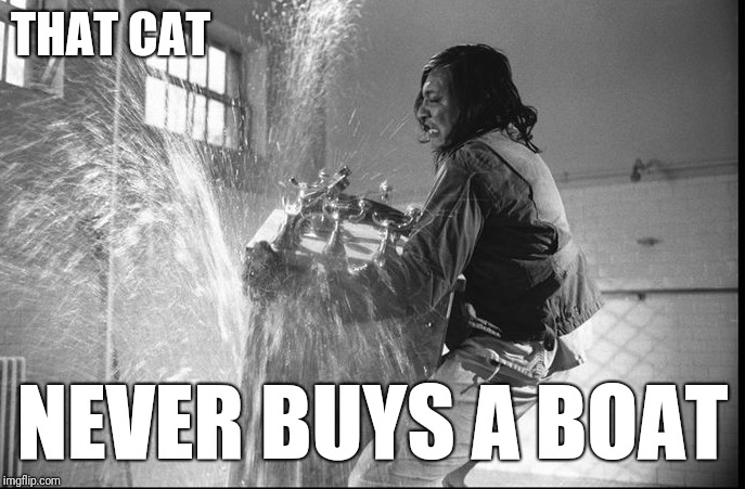 THAT CAT NEVER BUYS A BOAT | made w/ Imgflip meme maker