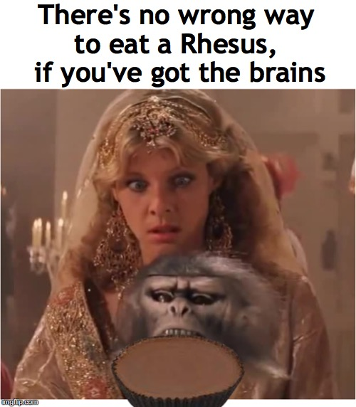 Up The Food Chain |  There's no wrong way to eat a Rhesus,  if you've got the brains | image tagged in reese's,monkey,brains,indiana jones,dank memes | made w/ Imgflip meme maker