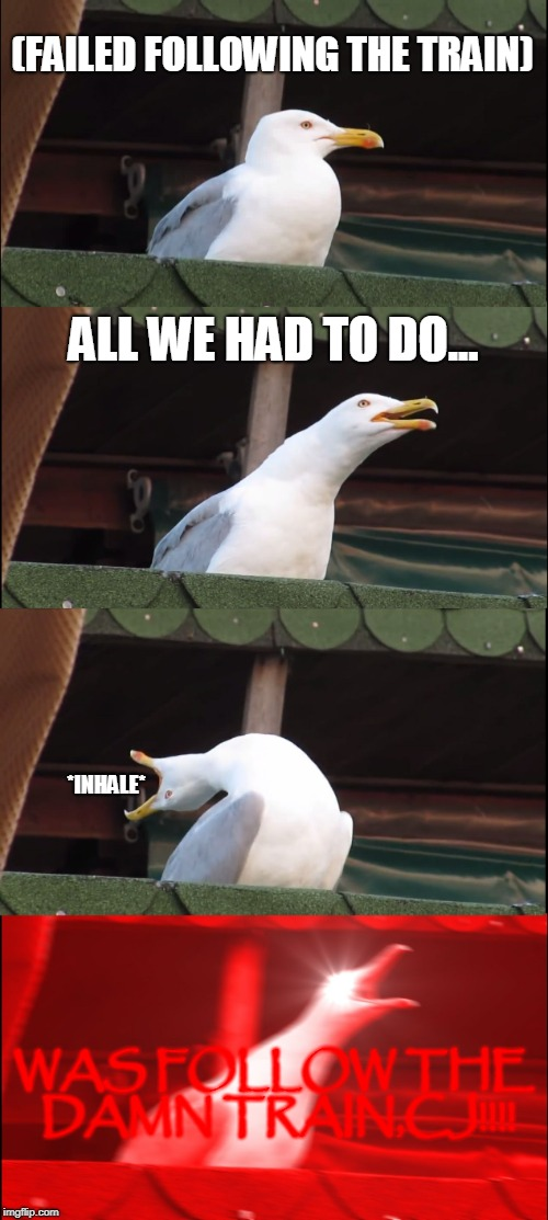Inhaling Seagull | (FAILED FOLLOWING THE TRAIN) ALL WE HAD TO DO... *INHALE* WAS FOLLOW THE DAMN TRAIN,CJ!!!! | image tagged in memes,inhaling seagull | made w/ Imgflip meme maker