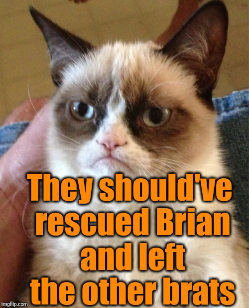 Grumpy Cat Meme | They should've rescued Brian and left the other brats | image tagged in memes,grumpy cat | made w/ Imgflip meme maker