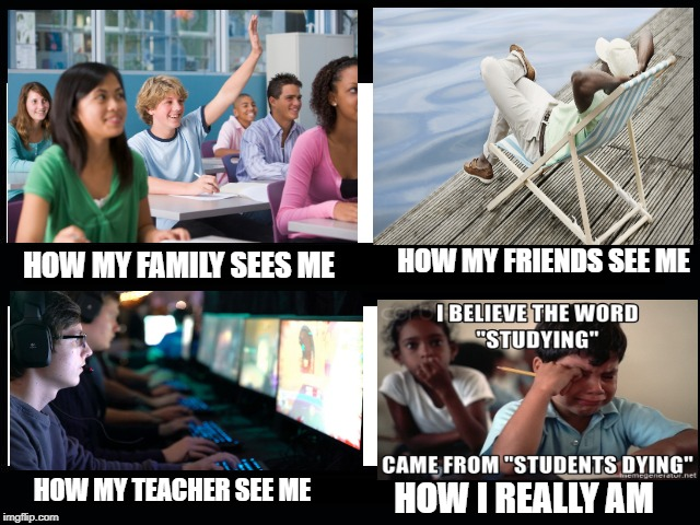 What I really do | HOW MY FAMILY SEES ME HOW MY FRIENDS SEE ME HOW MY TEACHER SEE ME HOW I REALLY AM | image tagged in what i really do | made w/ Imgflip meme maker