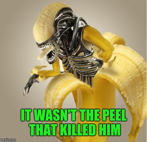 IT WASN'T THE PEEL THAT KILLED HIM | made w/ Imgflip meme maker