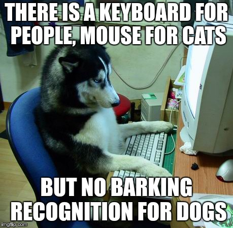 I Have No Idea What I Am Doing Meme | THERE IS A KEYBOARD FOR PEOPLE, MOUSE FOR CATS BUT NO BARKING RECOGNITION FOR DOGS | image tagged in memes,i have no idea what i am doing | made w/ Imgflip meme maker