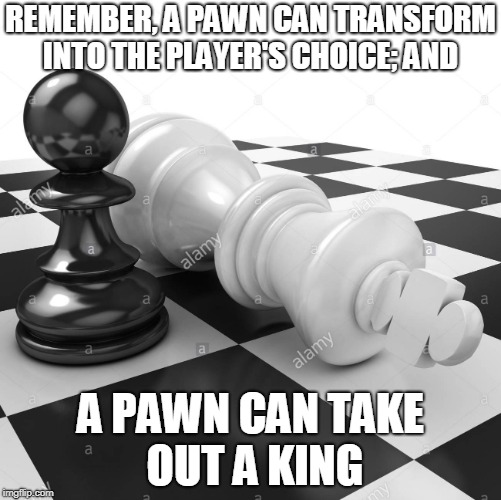 A PAWN | REMEMBER, A PAWN CAN TRANSFORM INTO THE PLAYER'S CHOICE; AND A PAWN CAN TAKE OUT A KING | image tagged in chess,pawn,king,choices | made w/ Imgflip meme maker