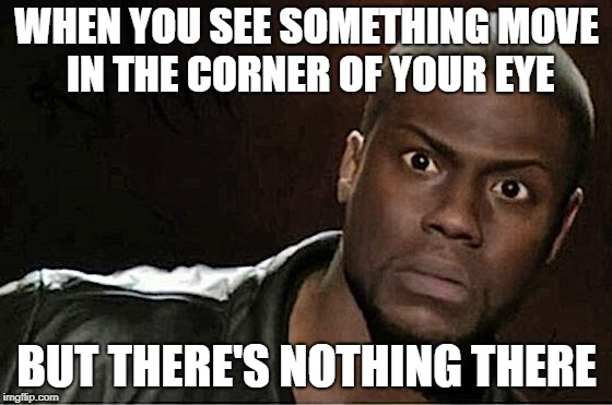 Kevin Hart Meme | WHEN YOU SEE SOMETHING MOVE IN THE CORNER OF YOUR EYE BUT THERE'S NOTHING THERE | image tagged in memes,kevin hart | made w/ Imgflip meme maker