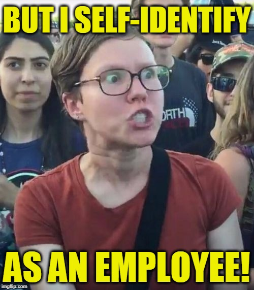 Triggered | BUT I SELF-IDENTIFY AS AN EMPLOYEE! | image tagged in triggered | made w/ Imgflip meme maker