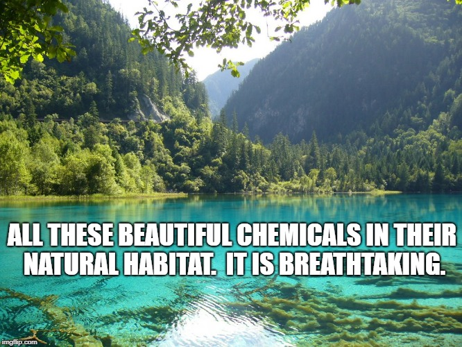 Beautiful Vista | ALL THESE BEAUTIFUL CHEMICALS IN THEIR NATURAL HABITAT.  IT IS BREATHTAKING. | image tagged in politics | made w/ Imgflip meme maker