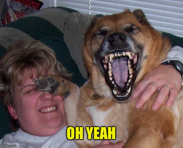 laughing dog | OH YEAH | image tagged in laughing dog | made w/ Imgflip meme maker