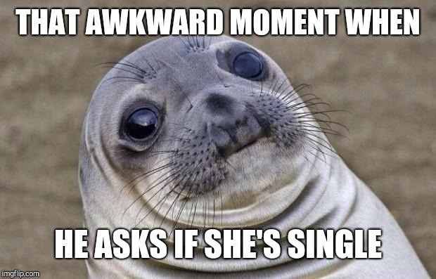 Awkward Moment Sealion Meme | THAT AWKWARD MOMENT WHEN HE ASKS IF SHE'S SINGLE | image tagged in memes,awkward moment sealion | made w/ Imgflip meme maker
