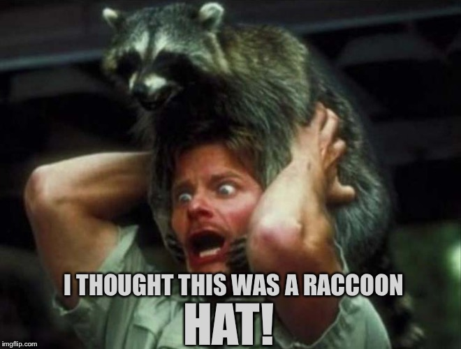 "I'm glad he didn't lie on the ""bearskin rug"". 