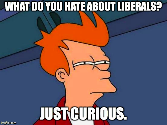 Futurama Fry Meme | WHAT DO YOU HATE ABOUT LIBERALS? JUST CURIOUS. | image tagged in memes,futurama fry | made w/ Imgflip meme maker