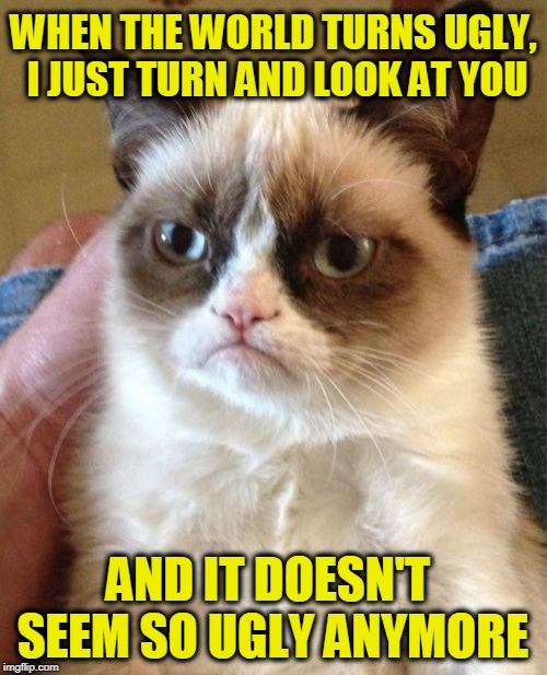 Grumpy Cat Meme | WHEN THE WORLD TURNS UGLY, I JUST TURN AND LOOK AT YOU AND IT DOESN'T SEEM SO UGLY ANYMORE | image tagged in memes,grumpy cat | made w/ Imgflip meme maker
