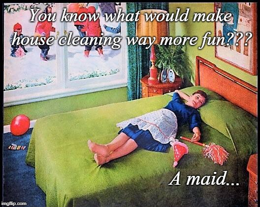You know what??? | You know what would make house cleaning way more fun??? A maid... | image tagged in housecleaning,more fun,maid | made w/ Imgflip meme maker