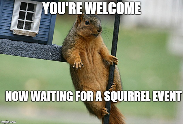 YOU'RE WELCOME NOW WAITING FOR A SQUIRREL EVENT | made w/ Imgflip meme maker