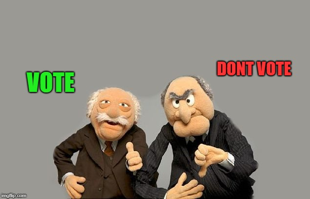 grumpy old men | VOTE DONT VOTE | image tagged in grumpy old men | made w/ Imgflip meme maker