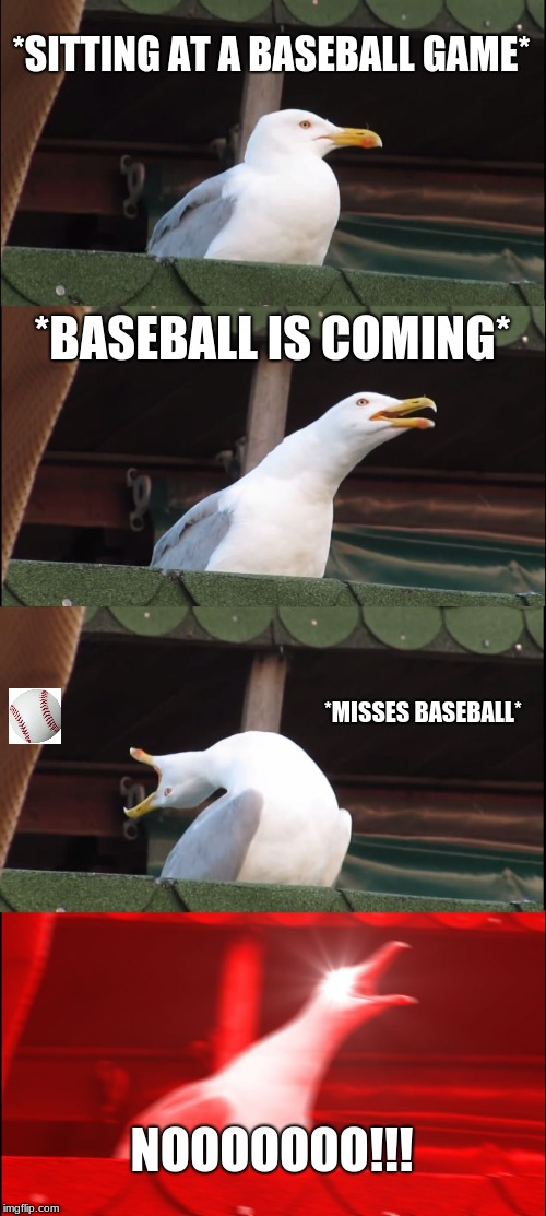 at baseball game | *SITTING AT A BASEBALL GAME* *BASEBALL IS COMING* *MISSES BASEBALL* NOOOOOOO!!! | image tagged in memes,inhaling seagull | made w/ Imgflip meme maker