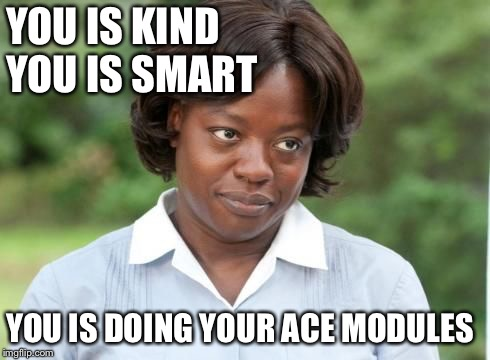 the help |  YOU IS KIND            YOU IS SMART; YOU IS DOING YOUR ACE MODULES | image tagged in the help | made w/ Imgflip meme maker