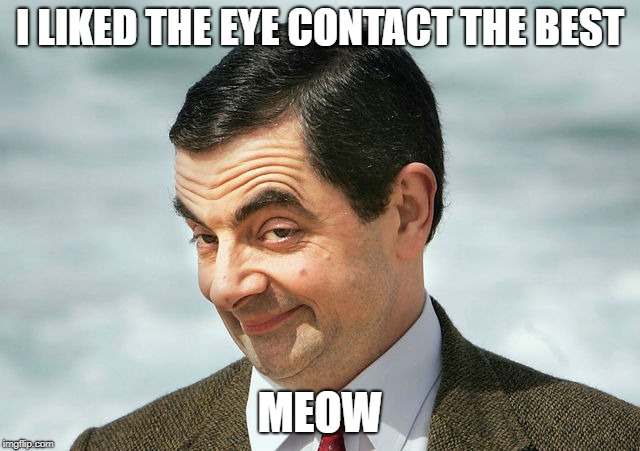 bean | I LIKED THE EYE CONTACT THE BEST MEOW | image tagged in bean | made w/ Imgflip meme maker