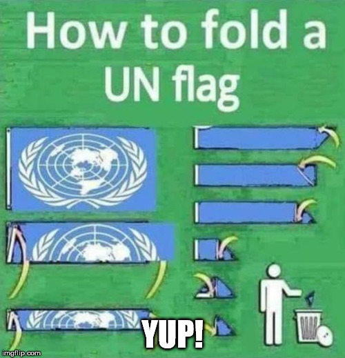 YUP! | image tagged in united nations | made w/ Imgflip meme maker