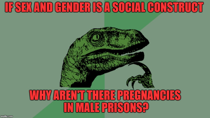 i'm sure someone is going to take this more serious than it is intended | IF SEX AND GENDER IS A SOCIAL CONSTRUCT WHY AREN'T THERE PREGNANCIES IN MALE PRISONS? | image tagged in philosophy dinosaur | made w/ Imgflip meme maker