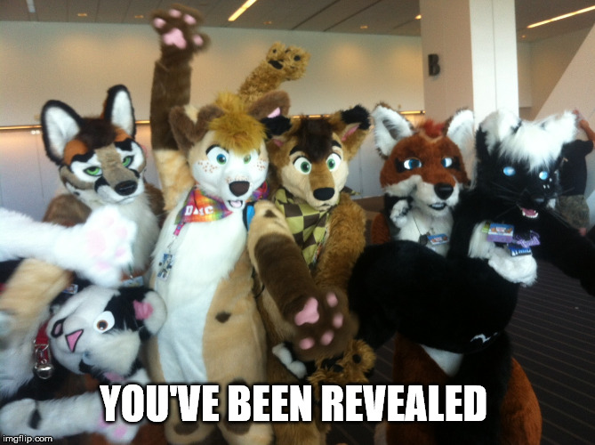 Furries | YOU'VE BEEN REVEALED | image tagged in furries | made w/ Imgflip meme maker