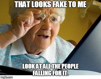 old lady at computer | THAT LOOKS FAKE TO ME LOOK AT ALL THE PEOPLE FALLING FOR IT. | image tagged in old lady at computer | made w/ Imgflip meme maker