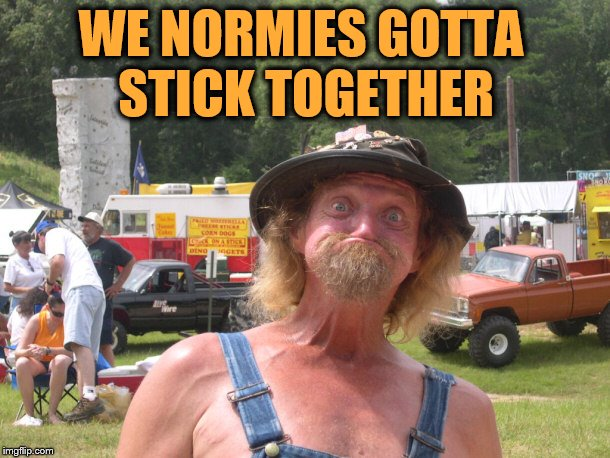 WE NORMIES GOTTA STICK TOGETHER | made w/ Imgflip meme maker